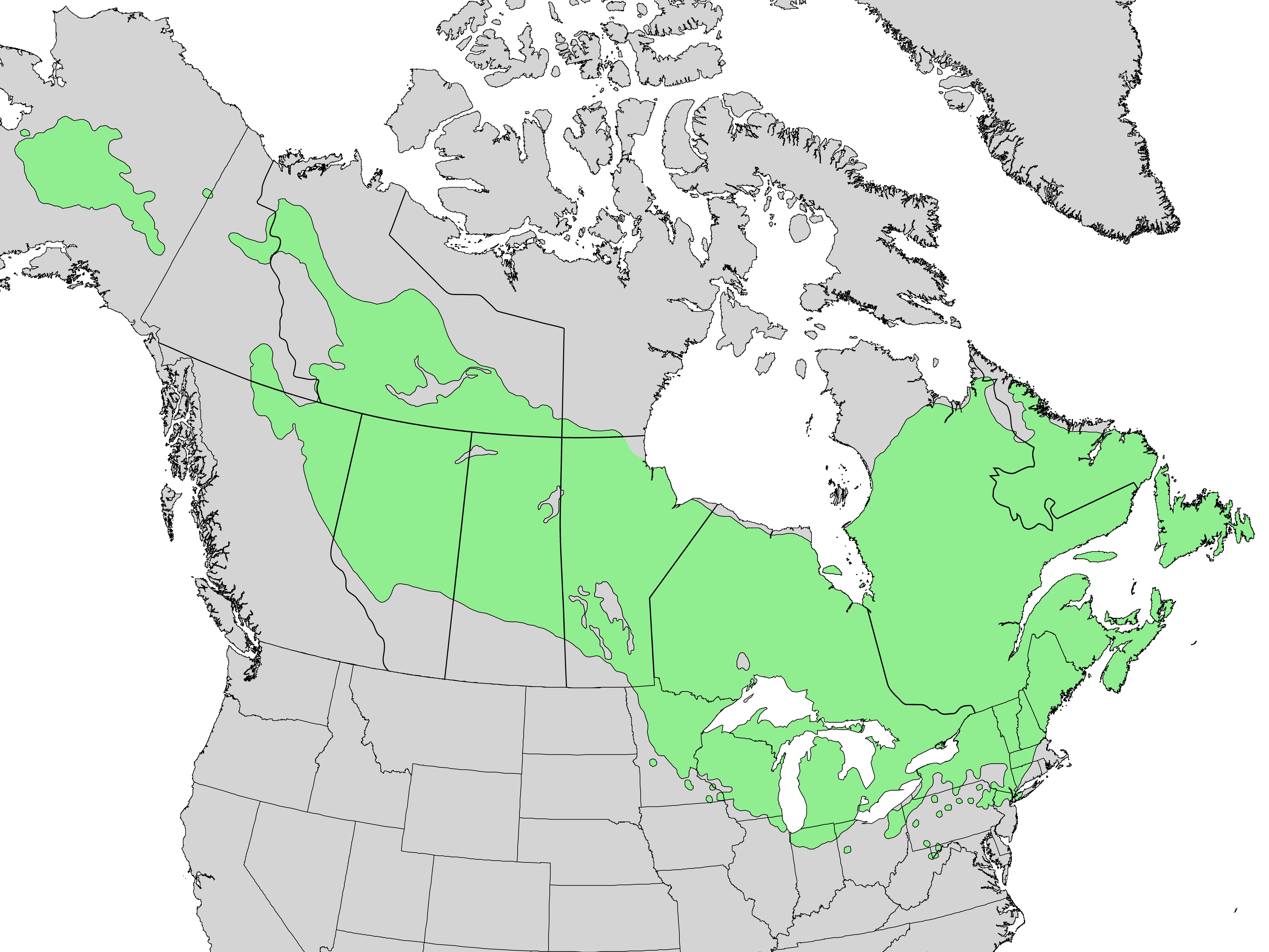 Larix laricina range map