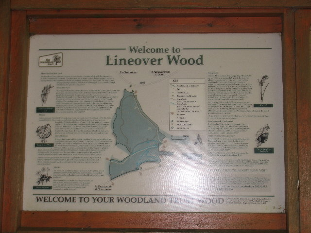 Lineover Wood Information Board - geograph.org.uk - 43914