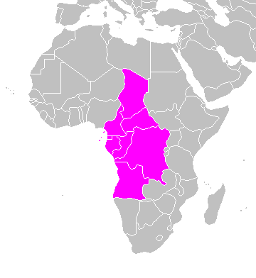 File:Middle Africa map.PNG   Wikimedia Commons