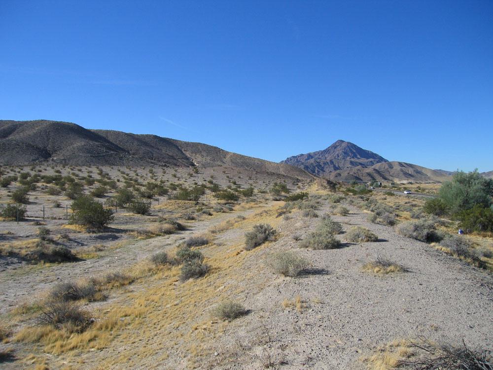 Black Desert Where To Get Reblath Shoe