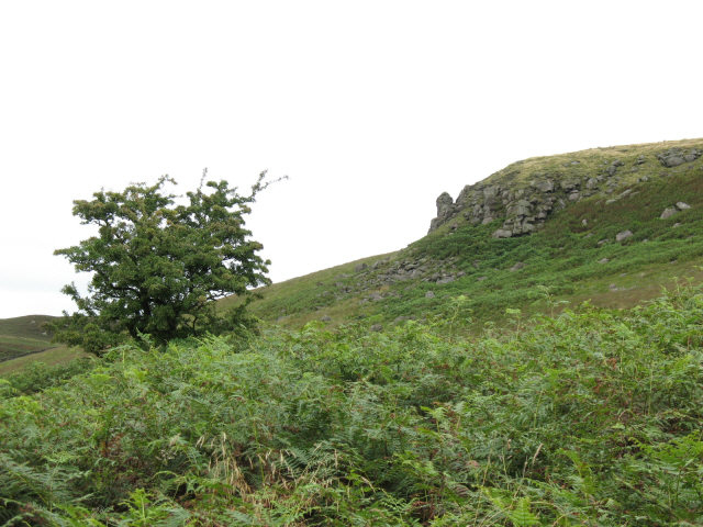 North end of Flasby Fell - geograph.org.uk - 534513