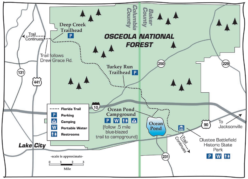 Osceola National Forest Travel Guide At Wikivoyage