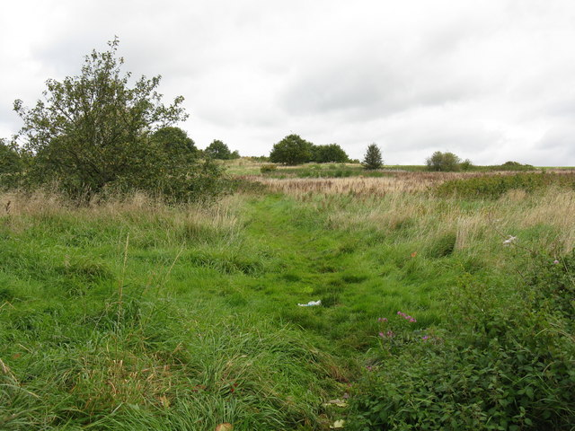 Path into Sandwell Valley Country Park - geograph.org.uk - 990226