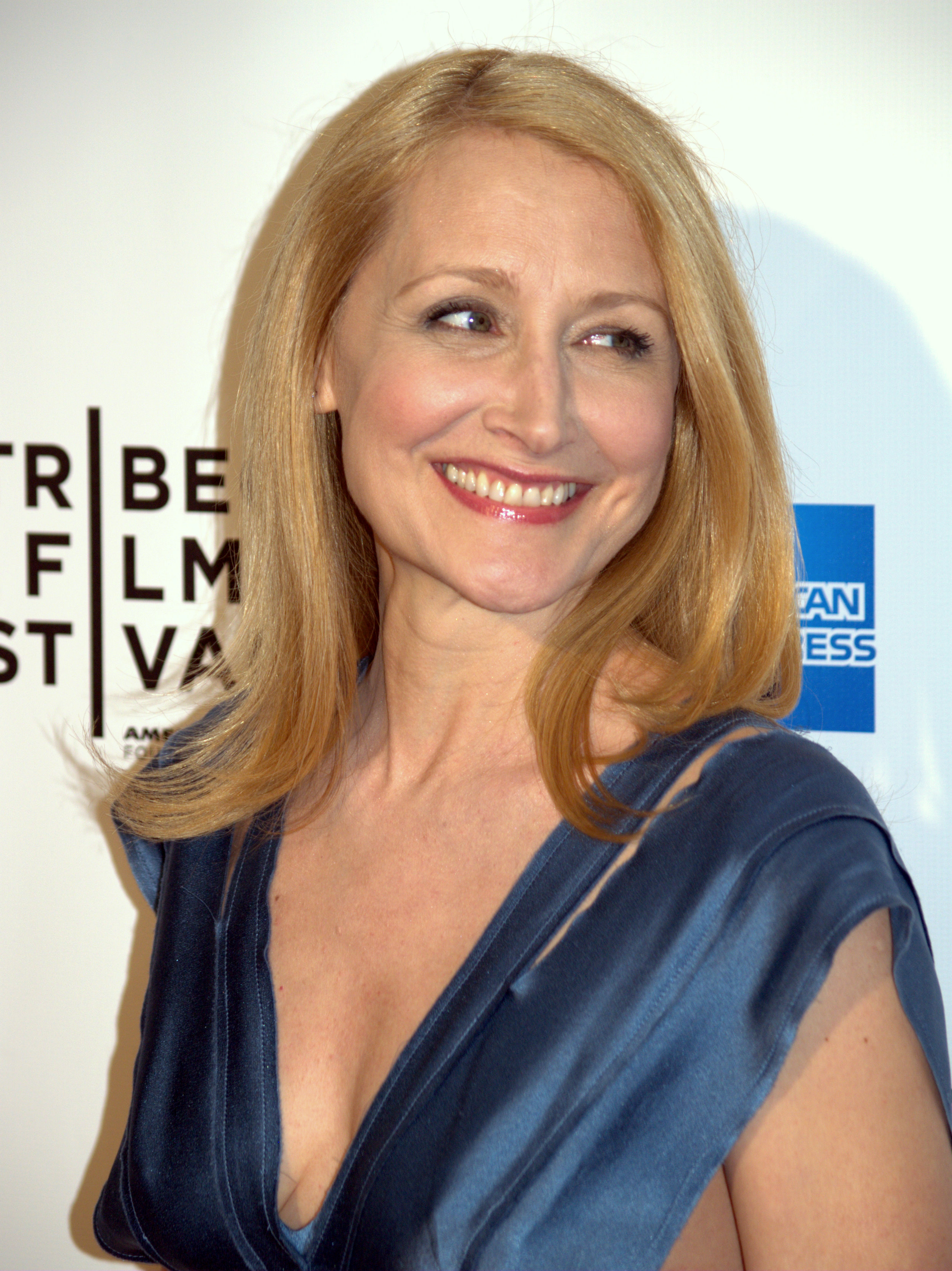 Patricia Clarkson earned a  million dollar salary, leaving the net worth at 3 million in 2017