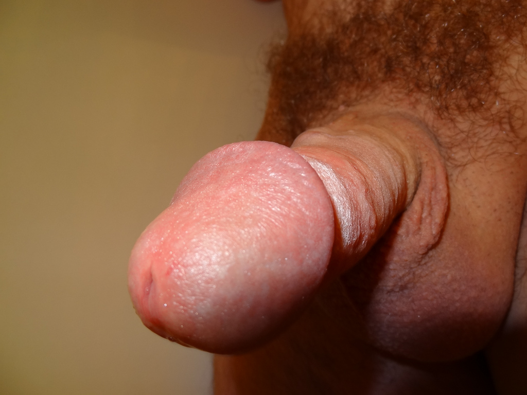 Closeup cocks naked small
