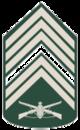Primeiro-Sargento..png