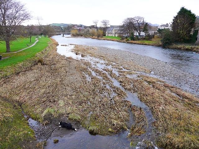 File:River Derwent in November - geograph.org.uk - 1065802.jpg