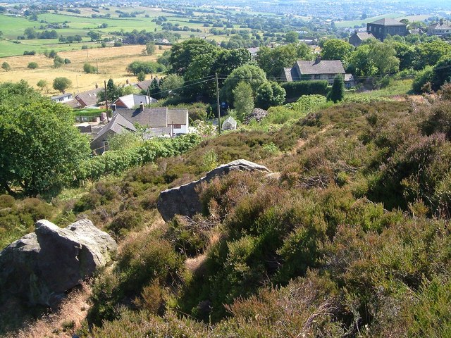 Slopes of Mow Cop - geograph.org.uk - 641828