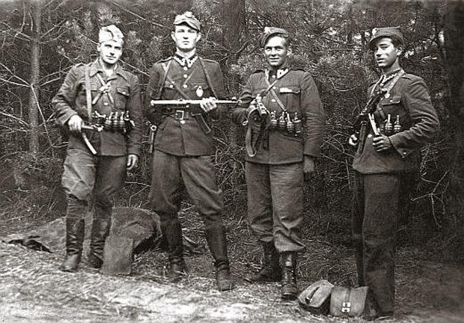 Tarzan_Zelazny_Sokol_Krzewina_%28VI-1947