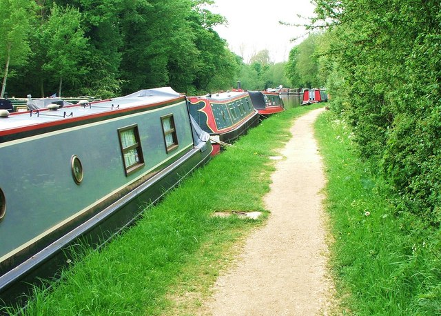 The canal towpath from Thrupp to Shipton-on-Cherwell - geograph.org.uk - 794781