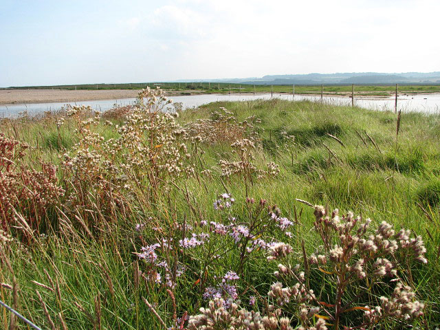This way to Cley Marshes - geograph.org.uk - 980892