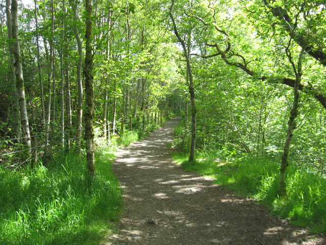 Woodland path near the Falls of Falloch - geograph.org.uk - 1358169