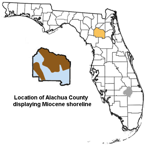 file alachua county florida exploding 600px png   wikipedia  the free