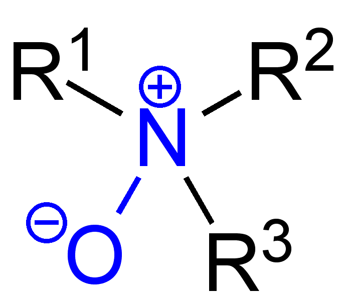 Oxidative Amination Mechanism Amine Oxide