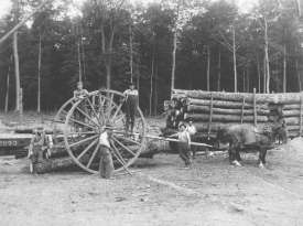 loggers in Ostego County, Michigan