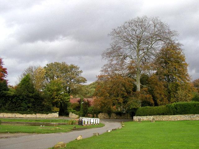 Brantingham Village Green - geograph.org.uk - 10964