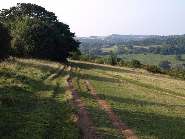 Cotswold Way, Leckhampton Hill - geograph.org.uk - 976948