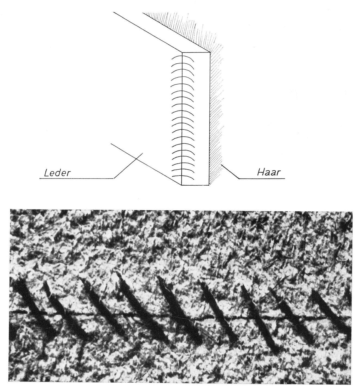 download Advanced Dynamics of Mechanical