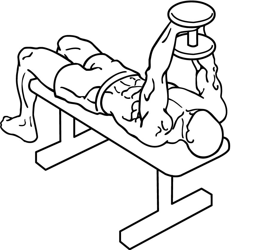 「ダンベルプルオーバー」の画像検索結果