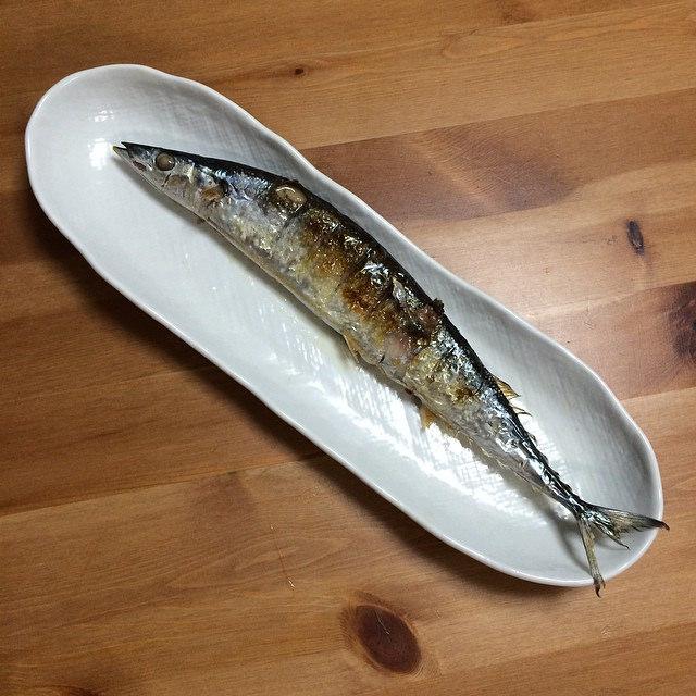 Fish on dish %2814967972879%29