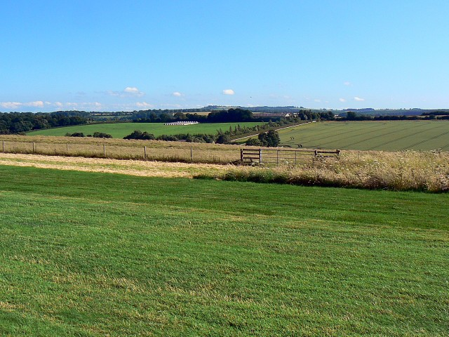 Gallops by the Wessex Ridgeway - geograph.org.uk - 885382