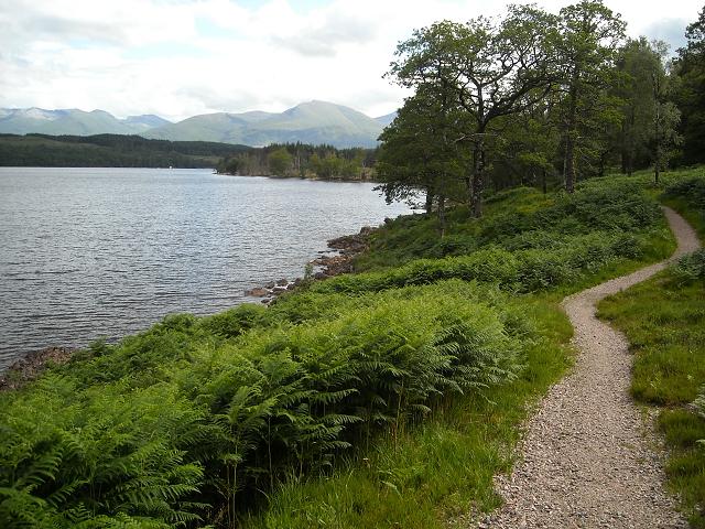 Great Glen Way at Loch Lochy - geograph.org.uk - 1396883
