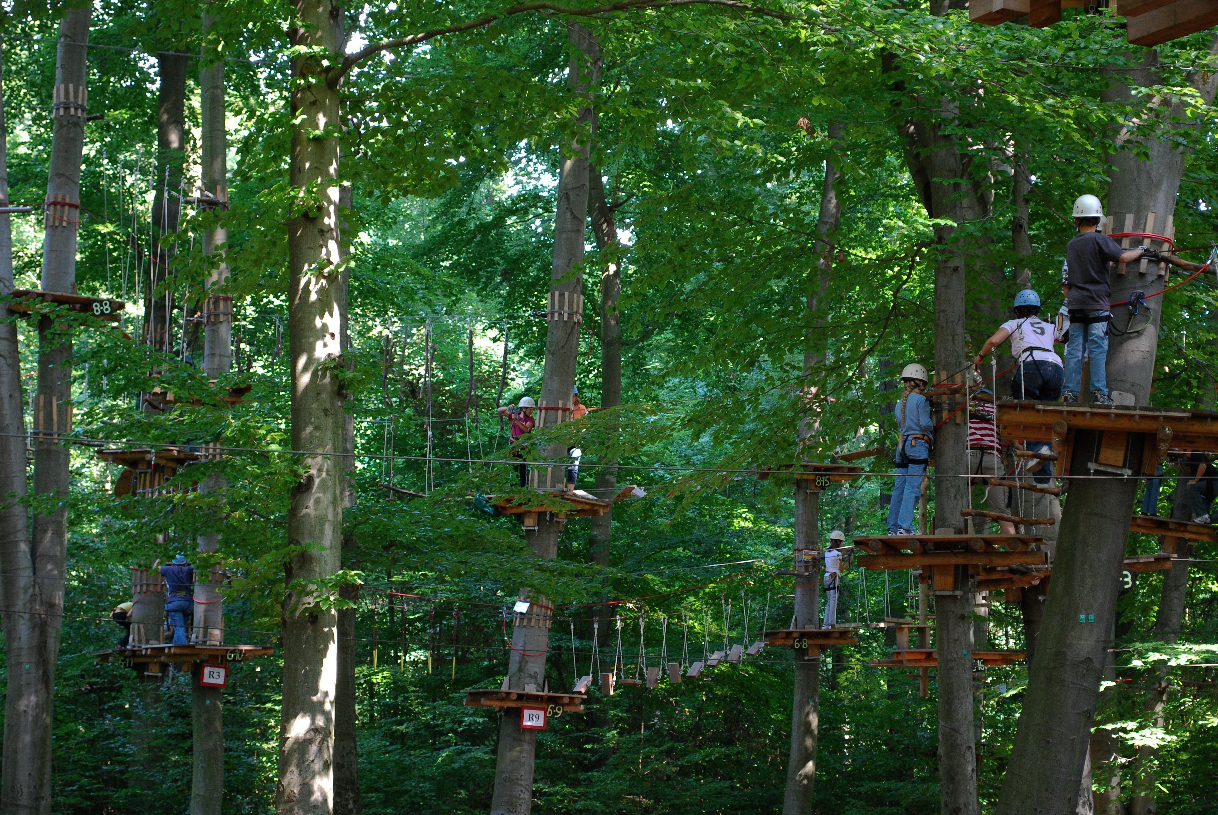 Comment Fixer Une Balançoire À Une Branche D Arbre parcours acrobatique en hauteur — wikipédia