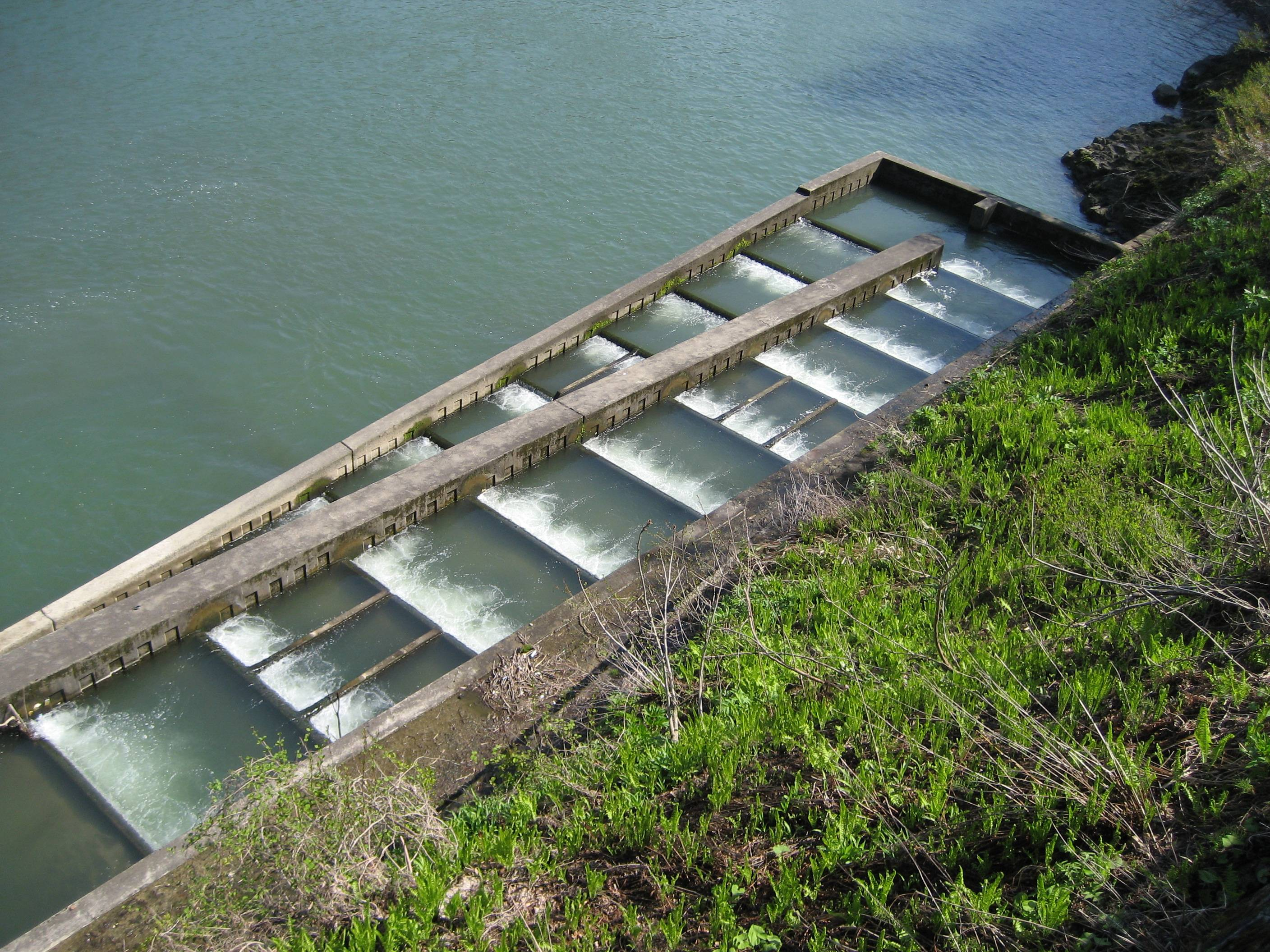 the impact of dams on river systems dam fish ladder invention fish ladder dam diagram #3