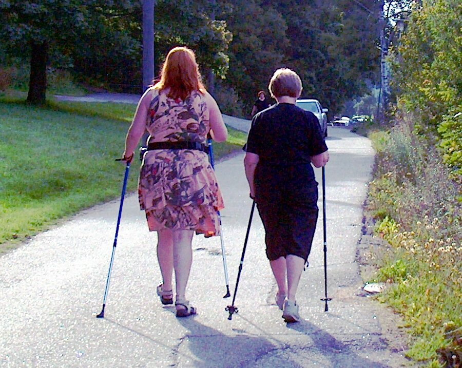 Nordic Walking Wikipedia
