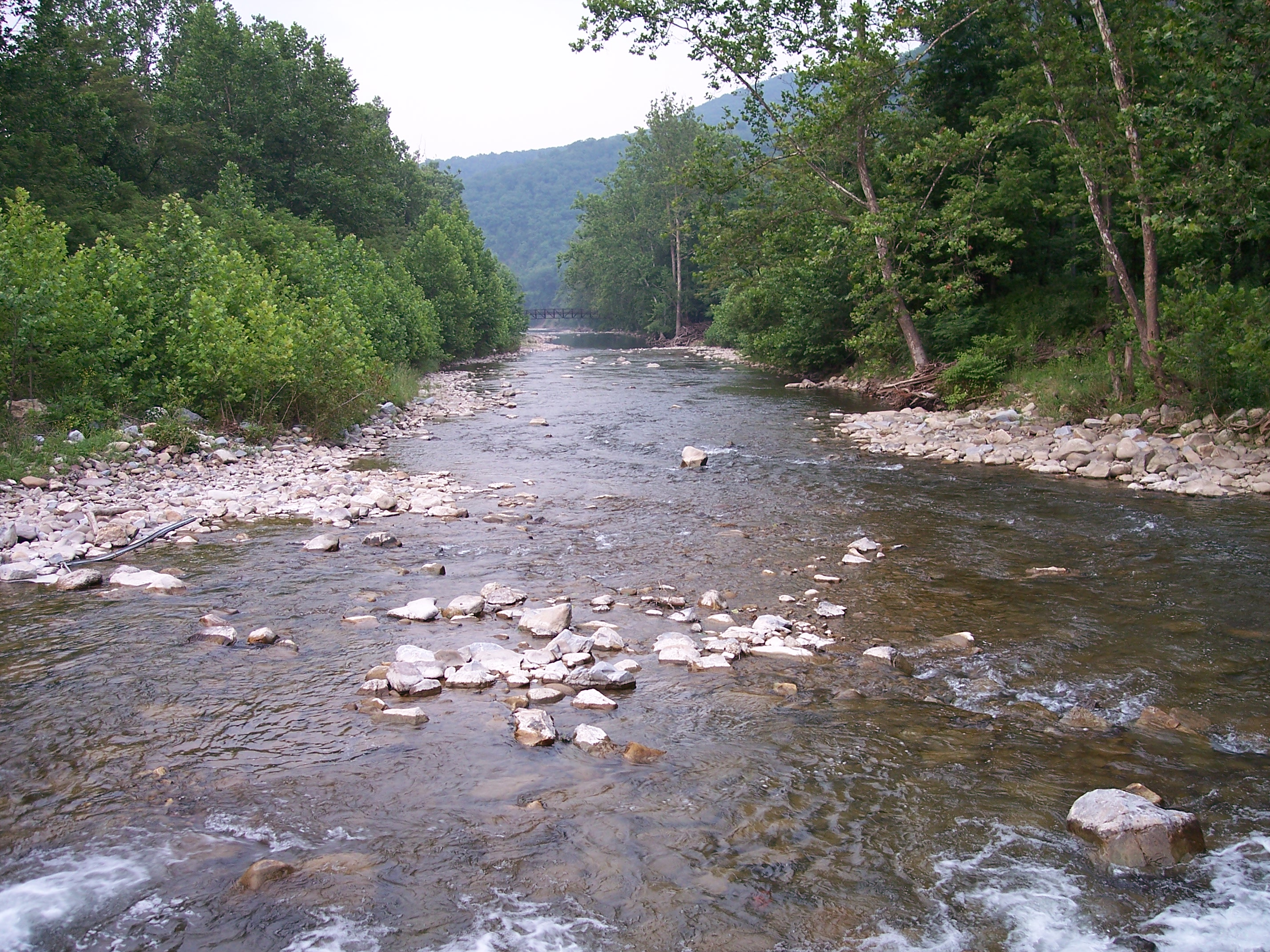 File:North Fork South Branch Potomac River.jpg  Wikipedia, the free