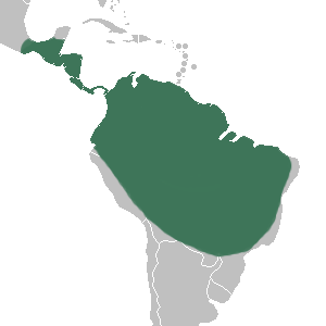 Phragmipedium - range map