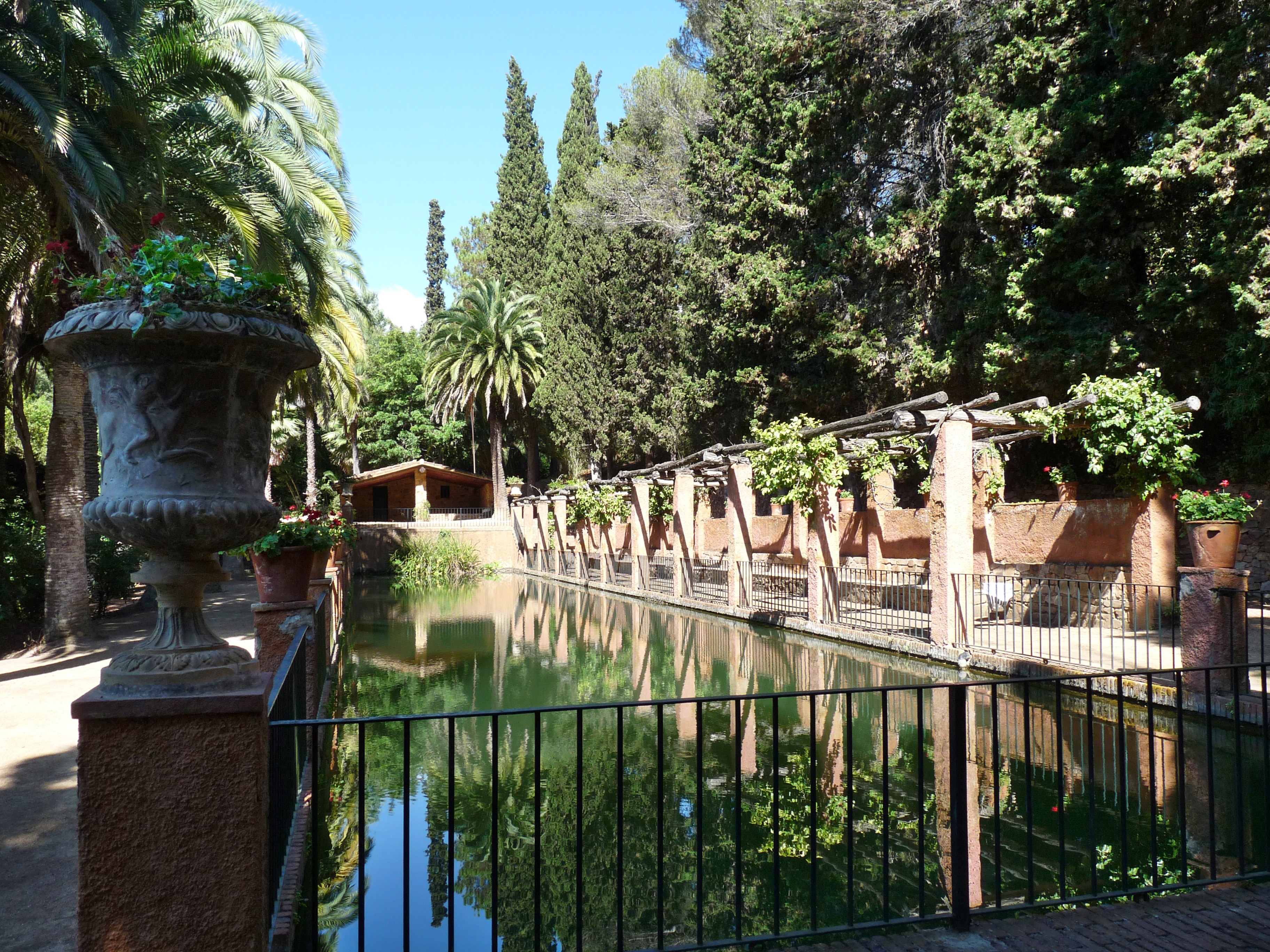 File pinya de rosa piscina wikimedia commons for Botanic com jardin