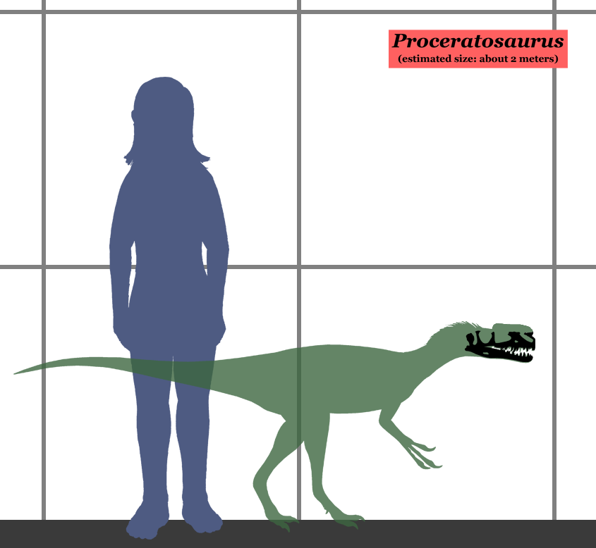 420 moreover Gap Fit together with Quetzalcoatlus also 82625 in addition Learn How To Draw Cms 1115. on human porportions