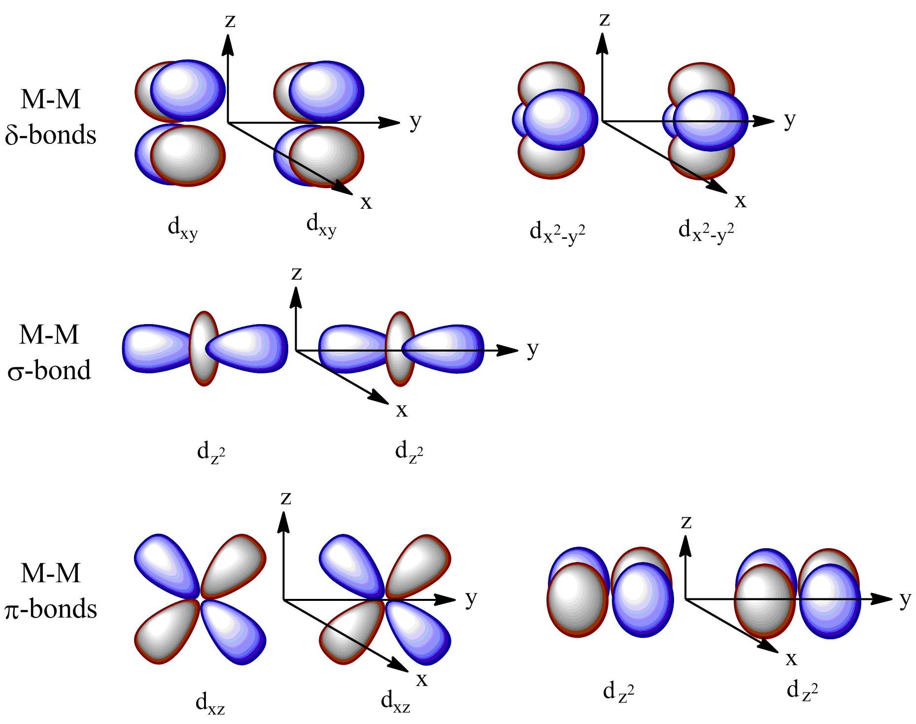 file quintuple bond orbital diagram png wikimedia commons : orbitals diagram - findchart.co