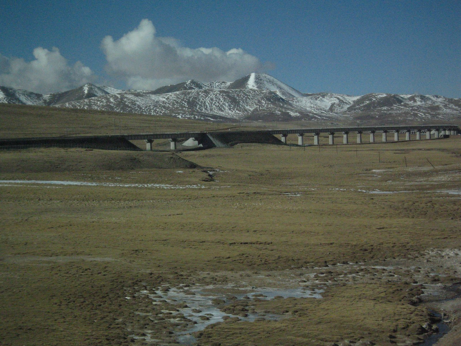Qinghai-Tibet Railway, the highest in the world.  Photo on Wikimedia Commons by reinhard_paulus