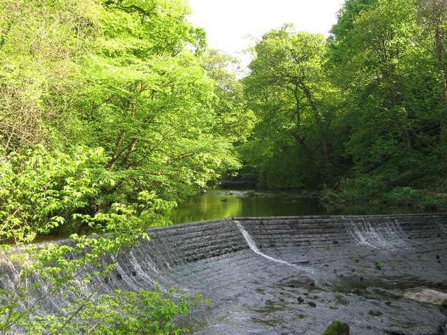 Water of Leith at Colinton Dell
