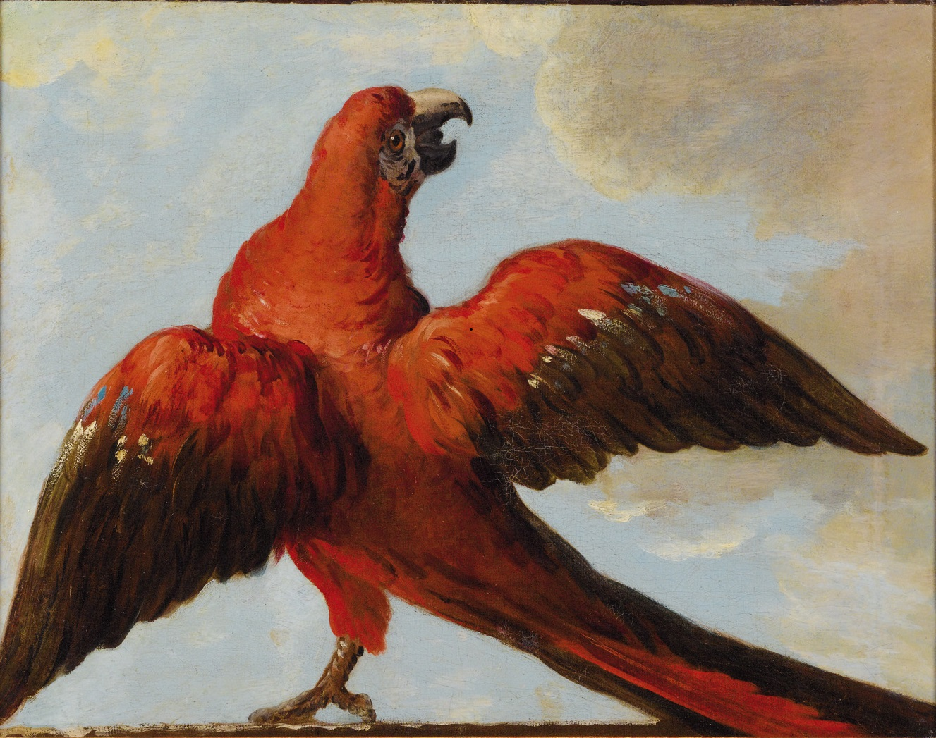 https://upload.wikimedia.org/wikipedia/commons/c/c0/%27Parrot_with_Open_Wings%27%2C_attributed_to_Jean-Baptiste_Oudry.jpg