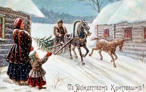 Красивые картинки лошадей зимой
