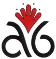 A6 logo.png