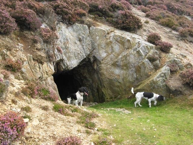 Adit entrance - geograph.org.uk - 1483375