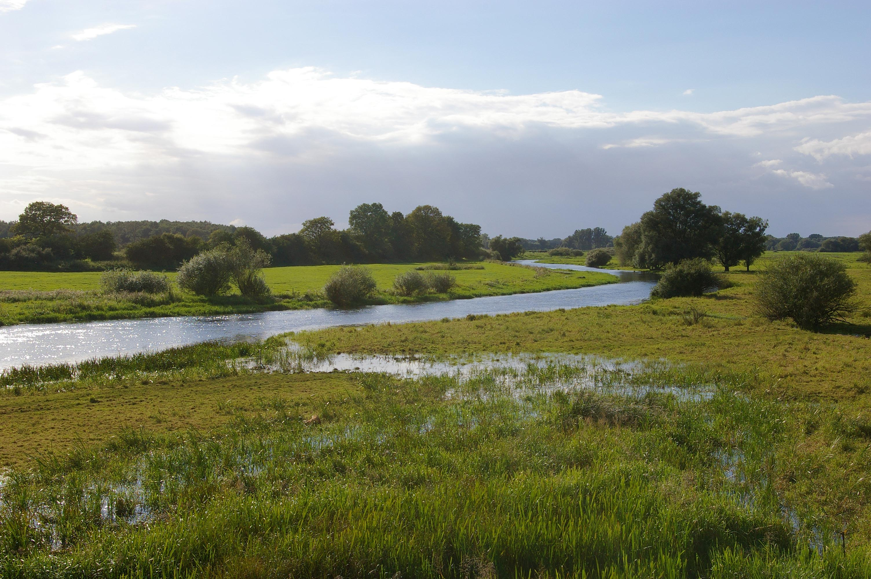 File:AlandFloodplain.jpg - Wikimedia Commons