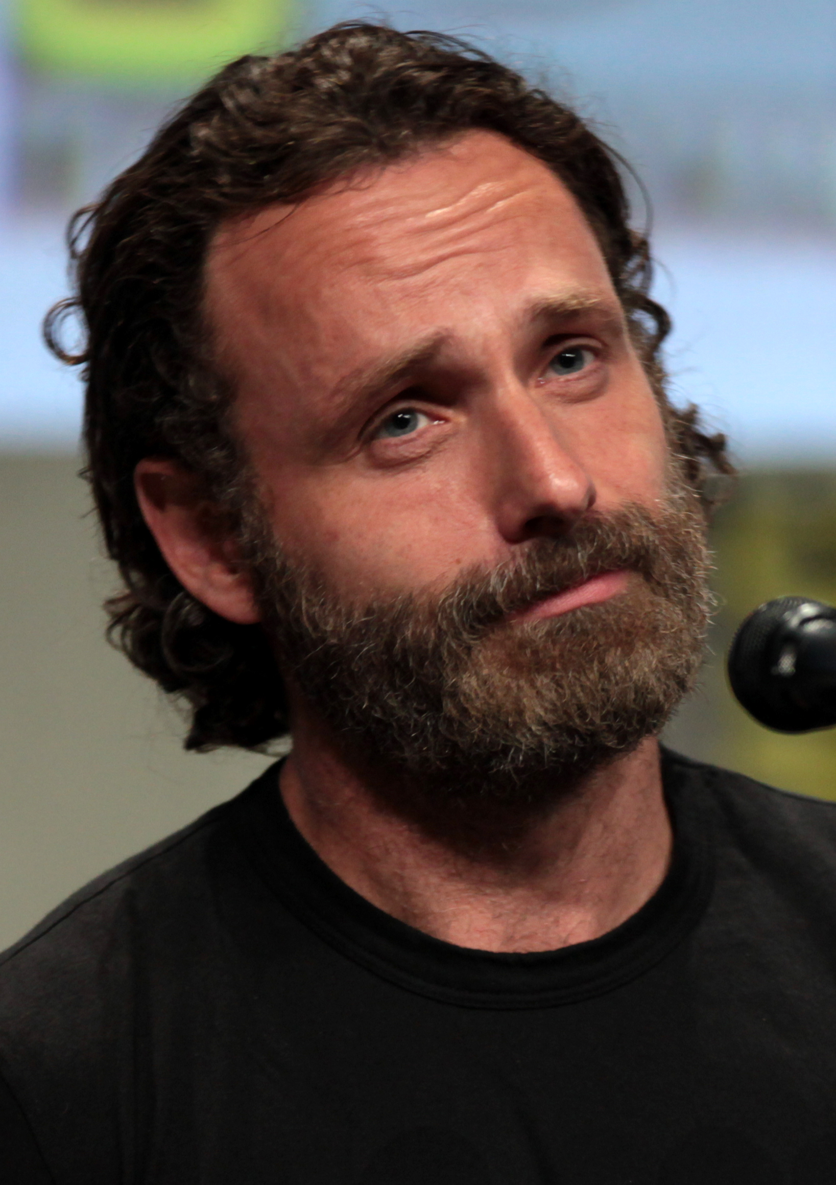 Andrew Lincoln  - 2019 Dark brown hair & urban hair style.