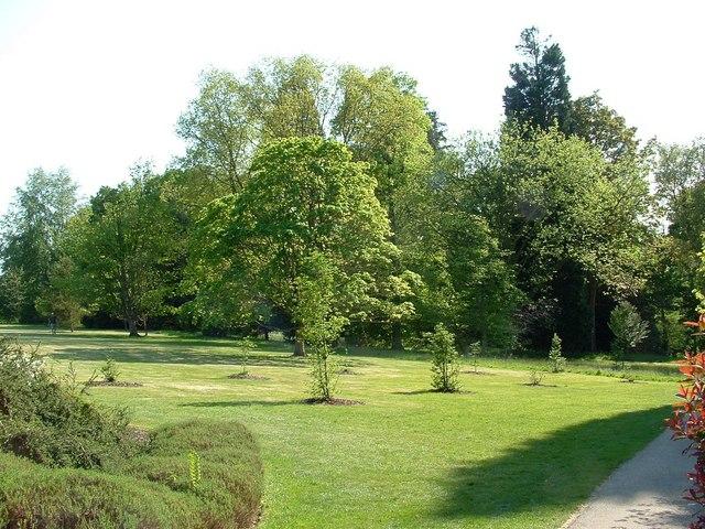 Arboretum, Wakehurst Place Gardens - geograph.org.uk - 809411