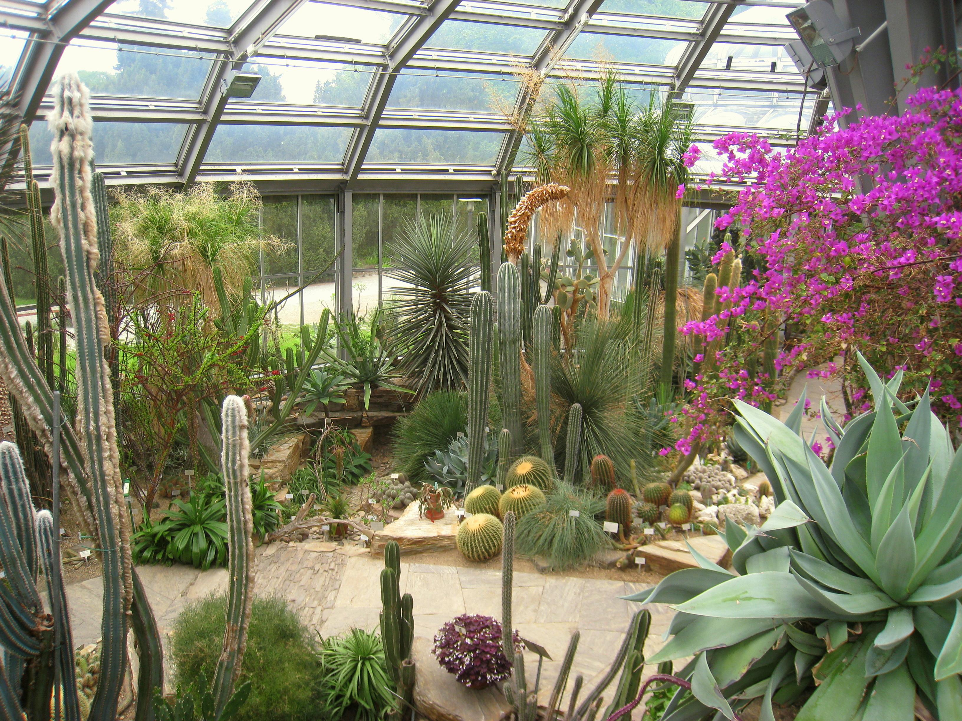 Garten berlin  File:Botanischer Garten, Berlin-Dahlem - view - IMG 8769.JPG ...