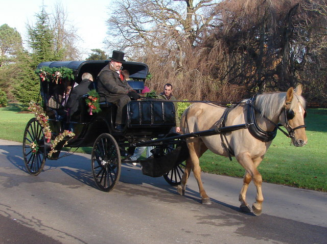 file christmas horse and carriage kew gardens geograph org uk