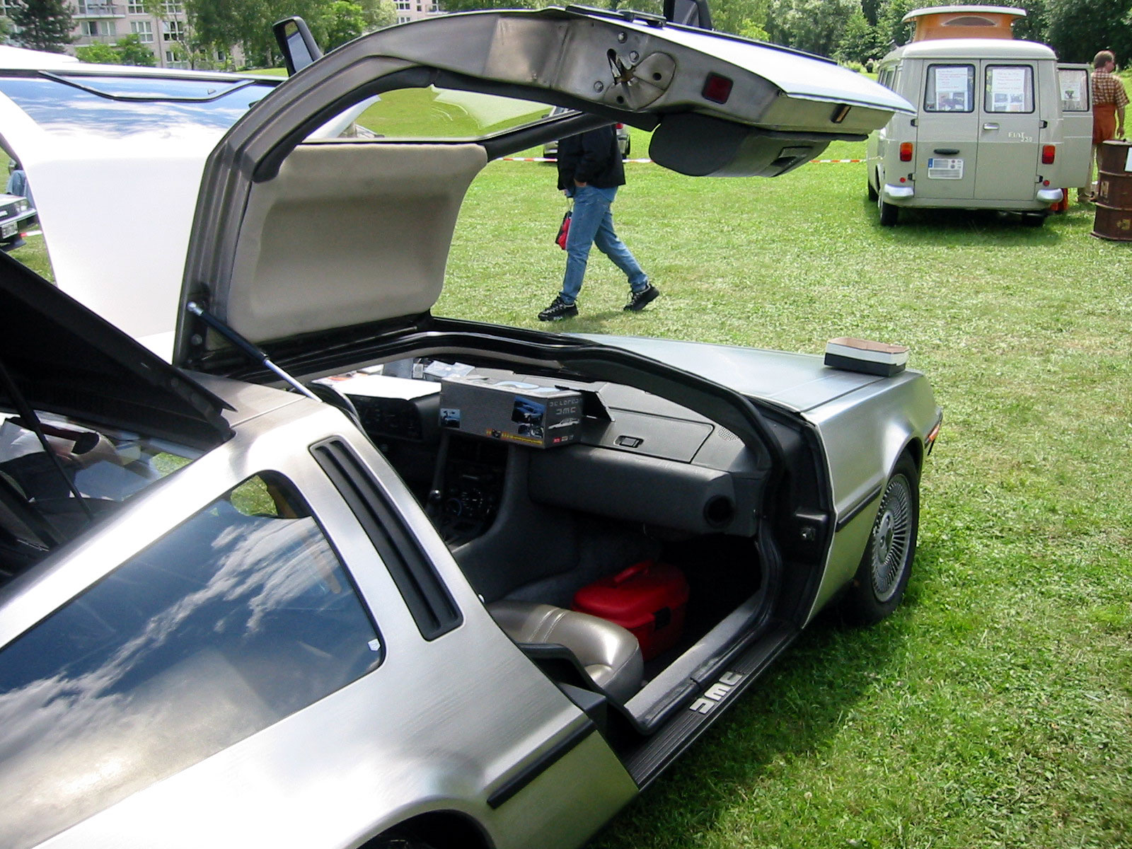 DeLorean Doors