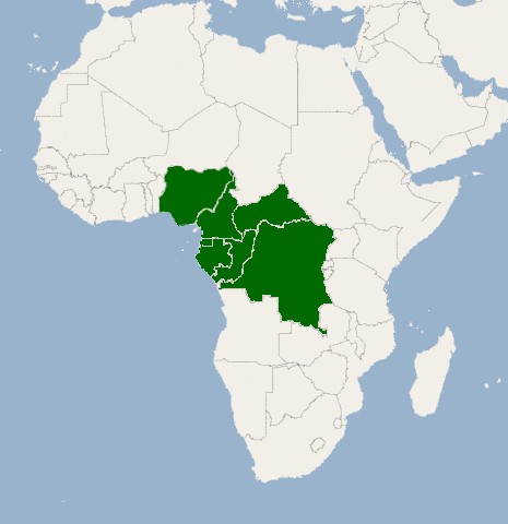 africa map of rainforests