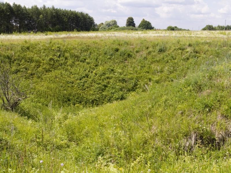 Карстовая воронка к югу отгорода Касимова,Рязанская область,Россия