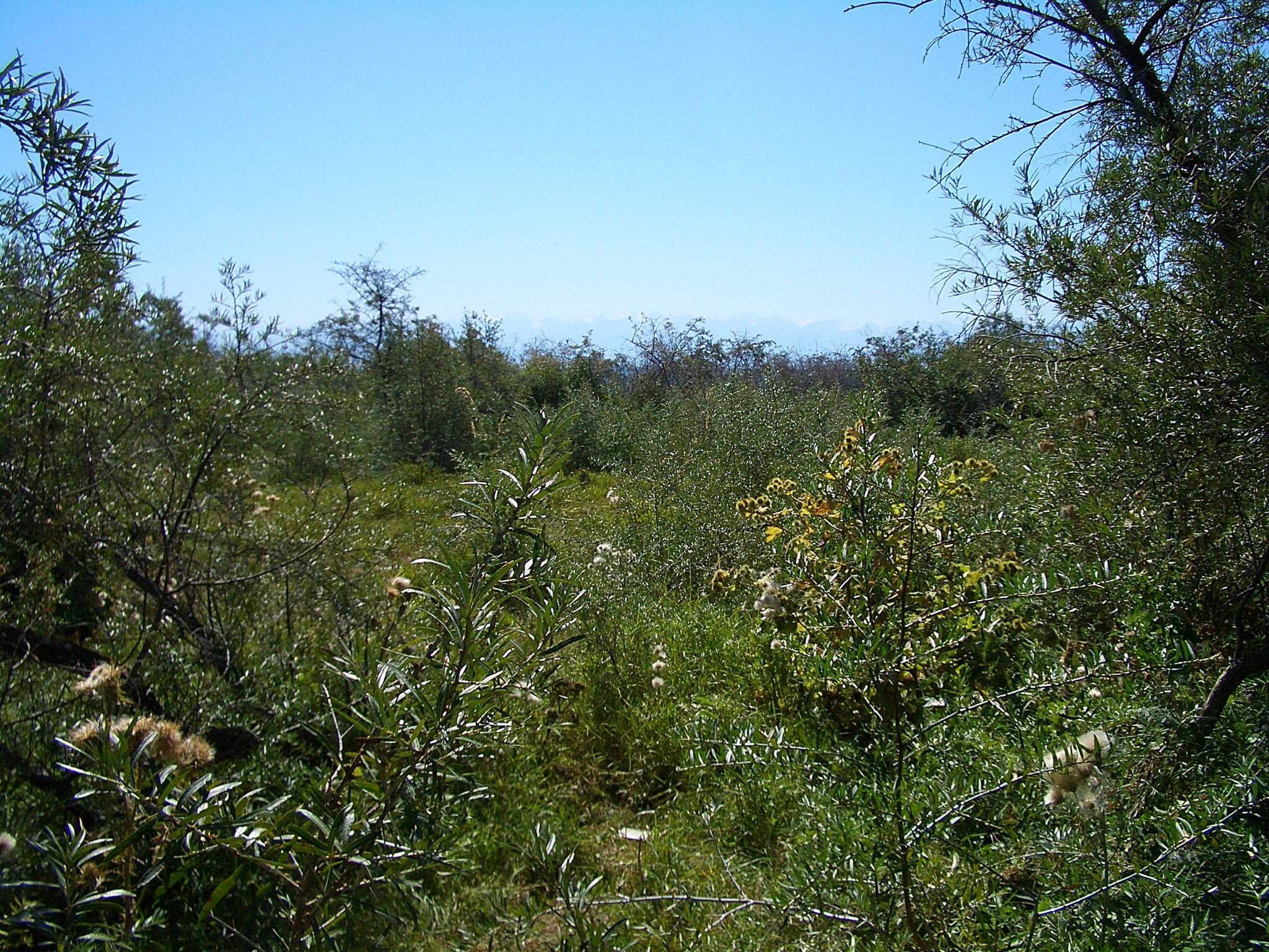 cbaby cherie wetlands: http://de.jpg4.info/cbaby cherie wetlands/pic1.html