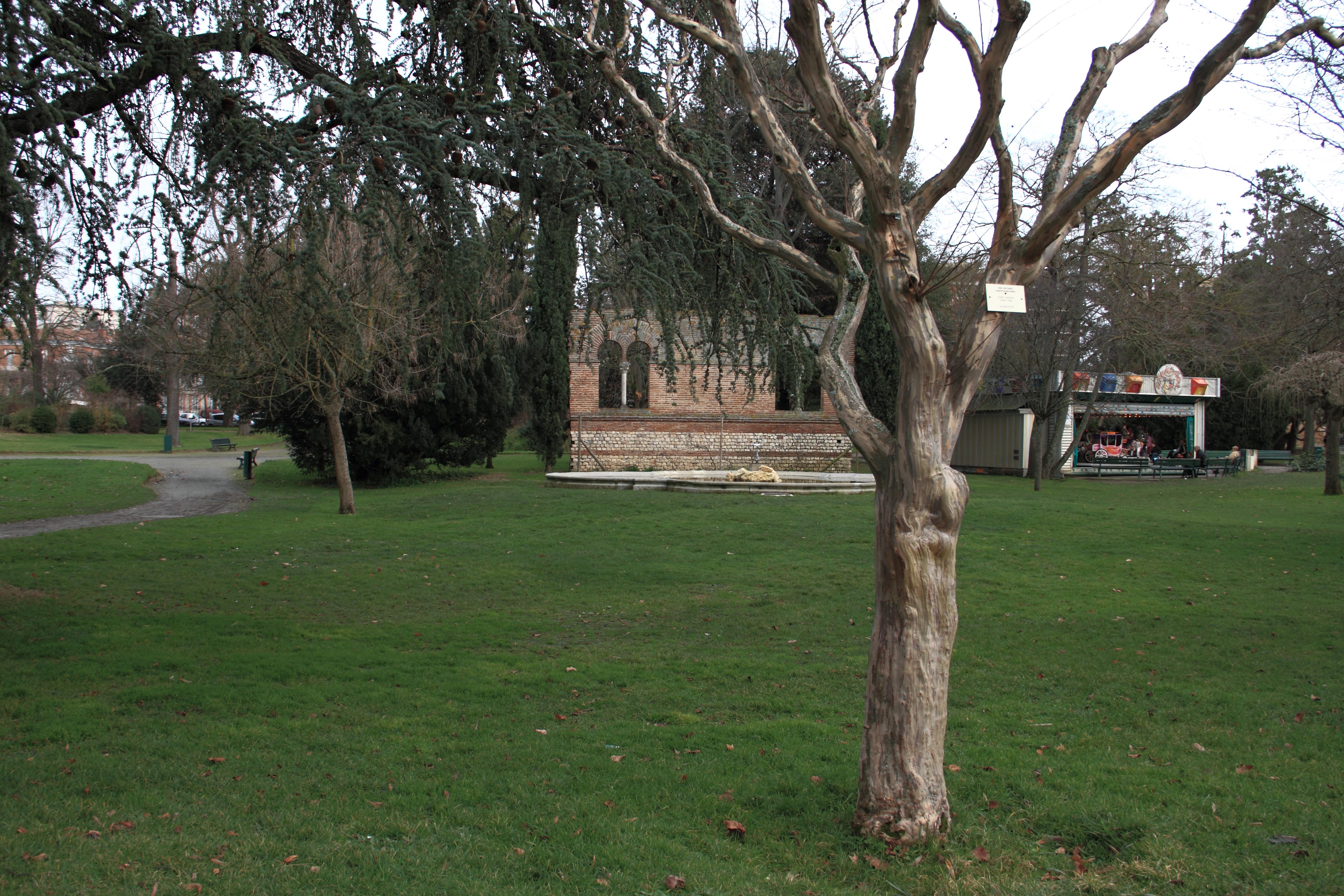 File Jardin des plantes de Toulouse en hiver 02 JPG Wikimedia